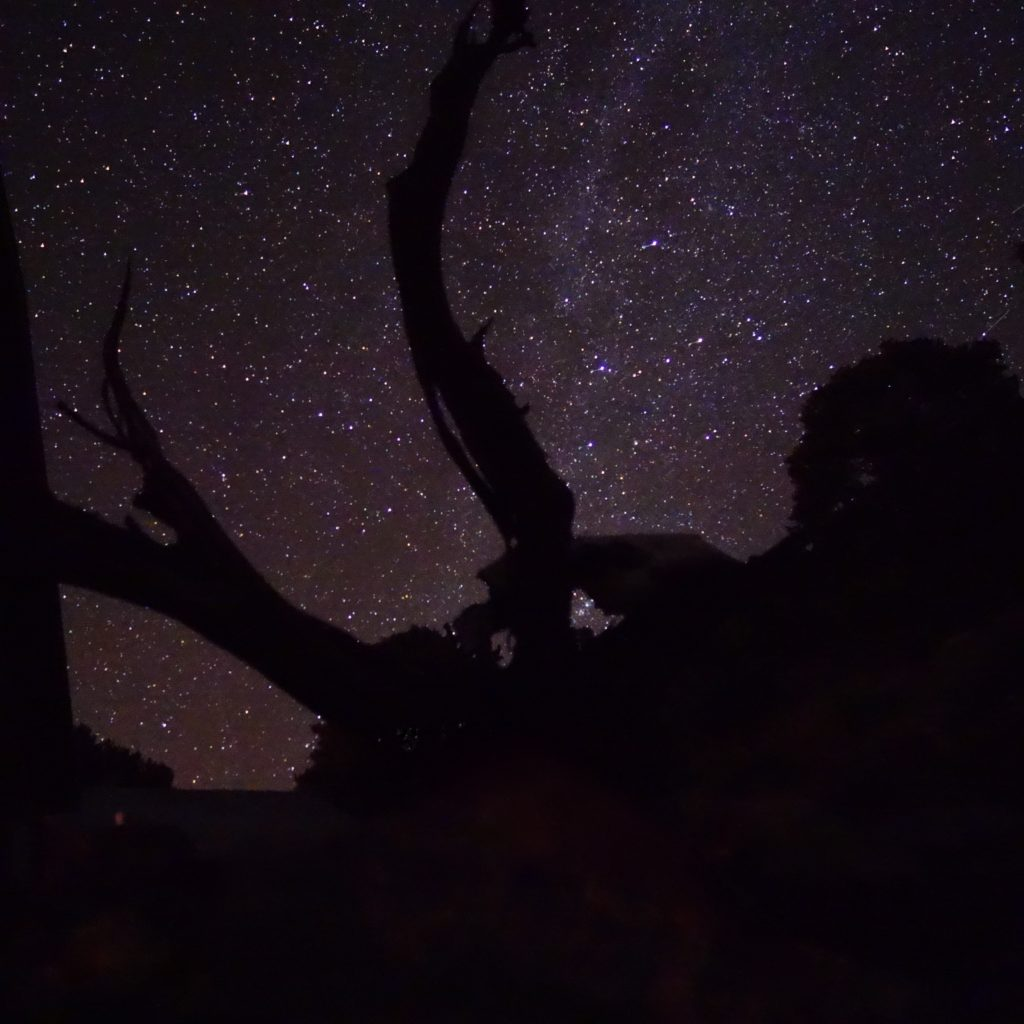 Milky Way in Manhattan, Nevada. A place very dear to my heart. Shout out to Larci for hosting us! :)